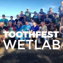 Toothfest Wetlab